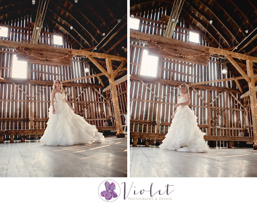 Hillsdale, WI Wedding Photographer