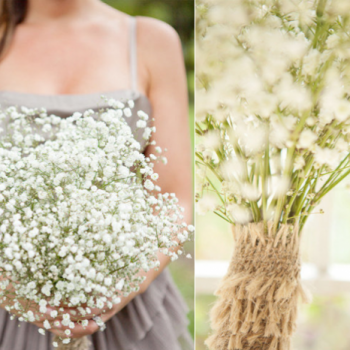 babys-breath-bridesmaid-bouquet-budget-wedding-ideas__full