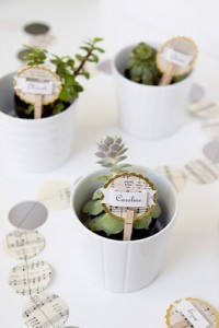 Alternative Ideas for Place Cards, double as favors