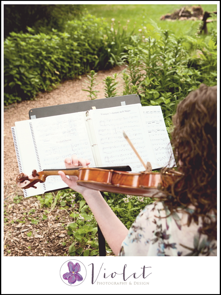 Eau Claire, WI Chippewa Valley Live Music, Violinist